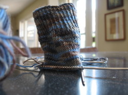 01blueregiastretchsocks042307